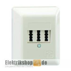 AP TAE Telefon-Anschlussdose 3x6 NFN rw 10210109 Rutenbeck