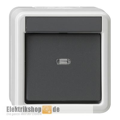Gira IP44 WG Kombination Wippschalter Steckdose Aufputz Grau 017630