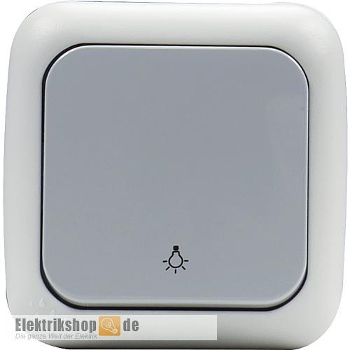 Taster Symbol Licht Aufputz grau Feuchtraum EGB VIKO